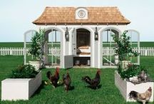 Dream Coops / Amazing chicken coops from beautifully simple to outlandishly expensive.