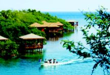Roatan / Roatan is an adventure traveler's vacation paradise; with blue skies, sun drenched clear turquoise water and year round temperatures in the high 70s and low 80s. Roatan is surrounded by the world's second largest barrier reef and offers first class Scuba Diving.
