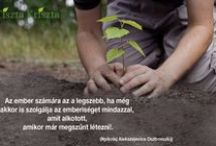 Minden ami környezetvédelem / A Földet nem szüleinktől örököltük, hanem gyermekeinktől kaptuk kölcsön.