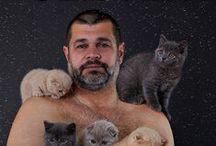 Kissat ja muut eläimet / Eläimiä, ensiisijaisesti kissoja ja siamilaisia