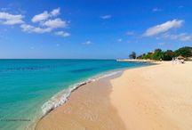 Ferie - Caribien