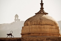 Incredible India! / by Amy Scher