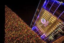 Świeć Się Galerio - uczestnicy II edycji plebicytu / Oto zdjęcia konkursowych galerii ubiegających się w tym roku o tytuł najpiękniej rozświetlonego centrum handlowego.