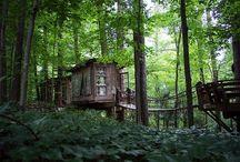 The three houses in my dreams... / La casa sull'albero