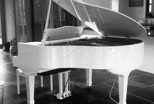 Wilh Steinmann Pianos