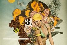 Collage / by Nancy Carver