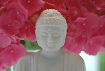 Buddha / by Nancy Carver