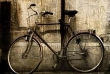 Vzhůru na kolo