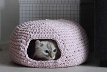 DIY For Your Pet / Here are some great ideas for making fun and useful stuff for your pets.  People are so creative and resourceful. Save money.... and make your pets happy too! Homemade pet beds, cat and dog toys, dog coats, even toothpaste for pets.  Fun Pins!