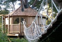 Treehouse / by Michael Hugh