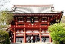Let's go to Tsurugaoka Hachimangu!   - The Komachi-dori and Flower Edition - / http://www.jnize.com/en/article/100000037/