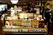 Brilliant Mixture of Culture and Trend! Limited-Time Bonsai Cafe in Shibuya! / http://www.jnize.com/en/article/100000088/