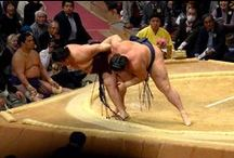 Clash! Sumo Wrestlers' Physical Abilities Were Not Odd!