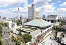 If you want to know more about sumo, take a trip to the sumo museum!