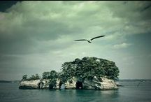 One of Japan's Three Most Scenic Views – Matsushima Bay and its 260 Pine Tree Covered Islets!