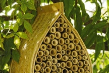 A home for the insects...