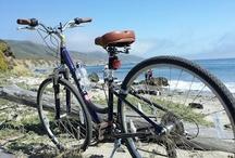 Pimp My Bike / by Fortune Gutierrez
