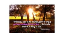 Quotes  / by Adriana A P