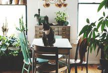 Home + Space / Ideas & Design Inspiration