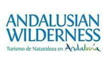 Nuestra Asociación de Empresas de Ecoturismo de Andalucía / Empresas asociadas a Andalusian Wilderness