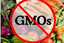 GMOs & Other Poisons / by Deborah