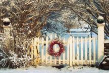 DIY Christmas 2 / by Marta McCall
