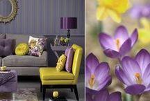 Color Solutions / Inspirational colors / by OC Association of REALTORS® (OCAR)