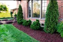 Gardening & Landscaping / For a beautiful home, inside and out.