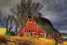 Barns of the World / by Nan Barnum