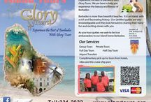 Our Barbados Tours and Excursions / Glory Tours offers a wide range of tours and excursions in Barbados for Hotel and Cruise ship visitors to the island.  This Board list the different tours that's we offer