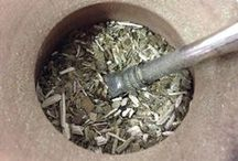 Yerba Mate - Tea / Everything you need to know about Yerba Mate, the #1 south american tea.