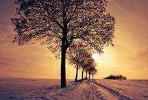 Dreamy nature