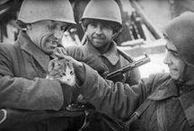 WW II Eastern Front / by Kima Bene