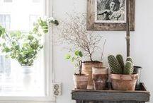 Home, Decor + Details