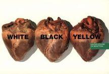 Marketing - United Colors of Benetton (Advertising/Publicité)