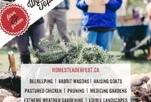 DIY Homesteader Fest 2015 / The DIY Homesteader Festival is a chance for people to connect with the skills and people needed to live more self-sufficient, sustainable lives!