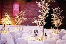 Blossom trees for wedding / Blossom trees for wedding decor to make your marquee or venue look truly magical.