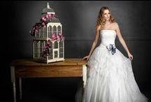 Abiti da sposa / Le Top collezioni di Abiti da Sposa