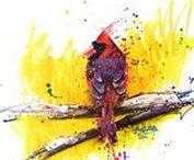Cynthia's birds / Dessins d'Oiseaux / Tous mes dessins et peintures d'oiseaux. All my bird's drawing & painting.