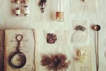 dioramas and cabinets of curiosities.
