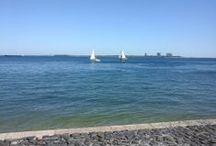 Setúbal, Serra Arrábida, Beaches ... / Wonderful Landscape, Sea, Beach, Historical
