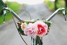 pretty bikes.