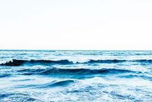 O C E A N / The cure for anything is salt water, sweat tears or the sea.