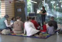 Como Education / All of the amazing educational programs Como Park Zoo and Conservatory offers!