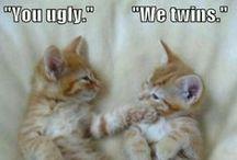 Funny! <3