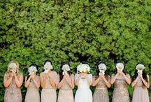 Must Have Photographs for your Wedding