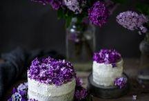 Rezepte: Lust auf Süßes || Dessert / Hier findet ihr allerlei süße Rezepte von Desserts über Kuchen, Eis, Torten, Brunchideen oder Keksen, alles was den Heißhunger auf Süßes stillt.
