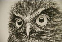 Woodland birds and beasties