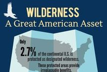 Wilderness infographics and maps