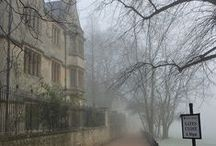 Fog / by janis melton